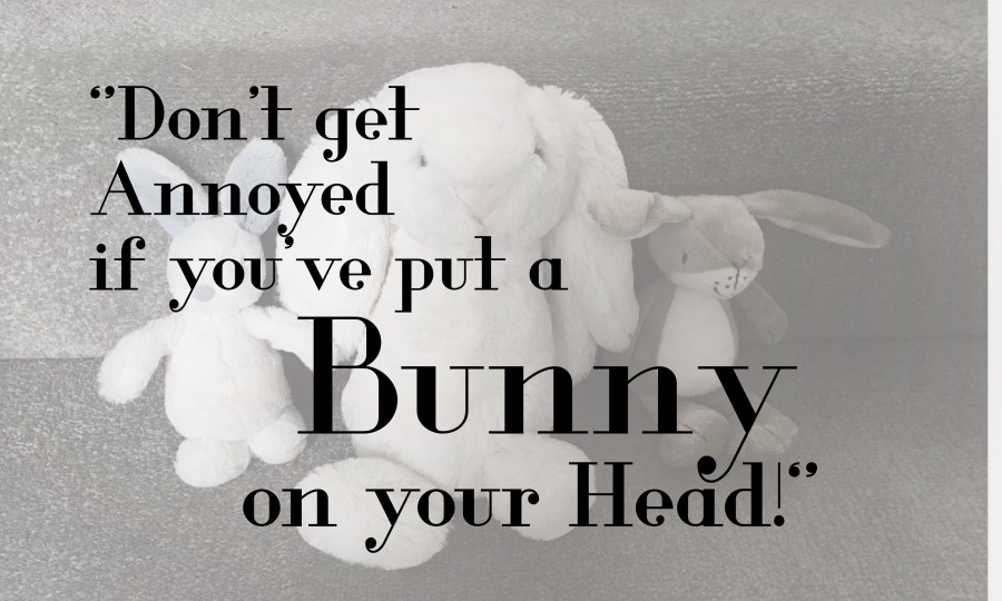 """""""Don't get Annoyed if you've put a Bunny on your Head!"""" and other ridiculous sentences I never thought I'dsay!"""